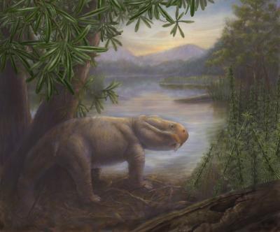 远古哺乳动物水龙兽是二叠纪